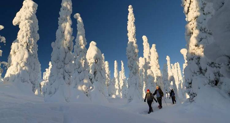Snowshoeing in Finland - Exodus Travels