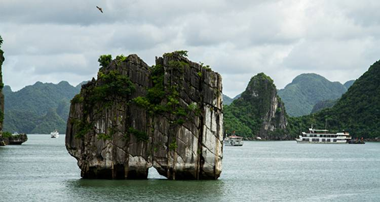 3 days Ha Noi and Ha Long Excursion from Ho Chi Minh City - Hoi An Express