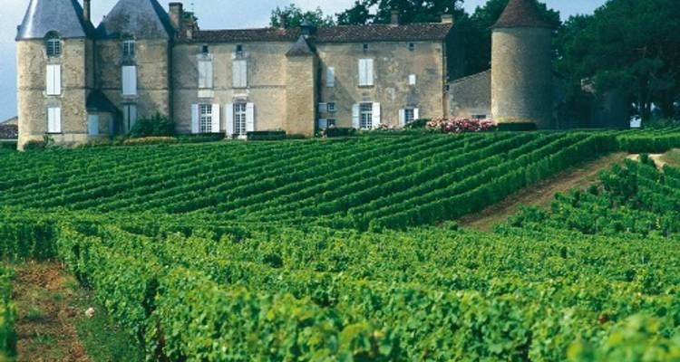 Medoc Vineyard Cycle - UTracks