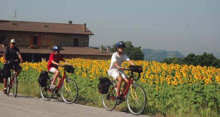 Florence to Rome by Bike - UTracks