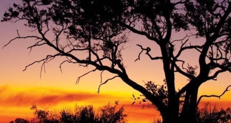 Okavango Experience - Intrepid