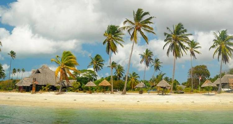 Mafia Island Honeymooners Special Safari - Sed Adventures Tours and Safaris