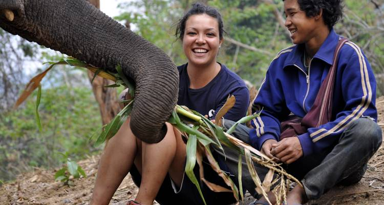Conservation of Elephants in Huay Pakoot, Thailand (7n+) - Experiential Education Limited t/a GVI