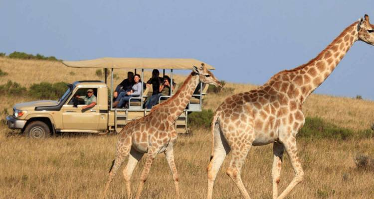 Garden Route and Safari - Hotspots2c