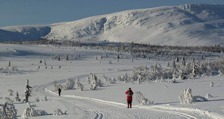 Cross-country Skiing: Venabu (1 destination) - Exodus Travels