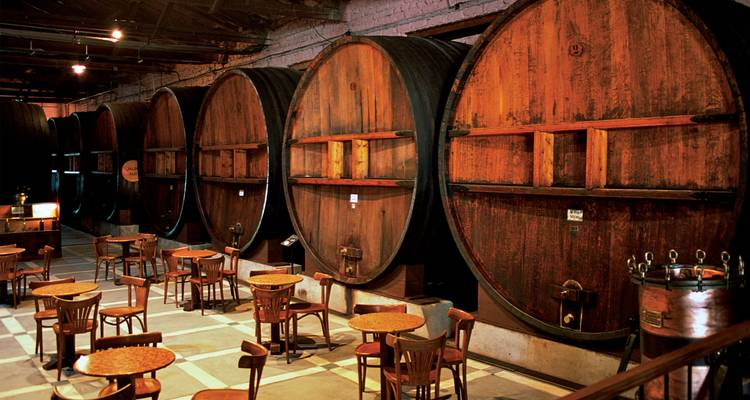 Mendoza Wineries Independent Adventure - G Adventures