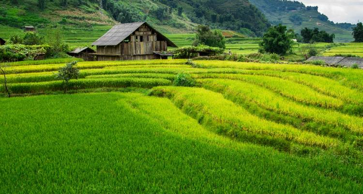 3-day Sapa - Bac Ha Market from Hanoi - Hoi An Express