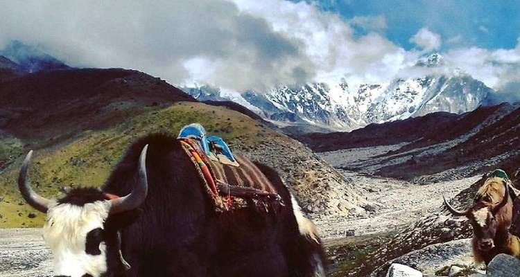 Everest Panorama Trekking - Manakamana Treks & Expedition Pvt. Ltd.
