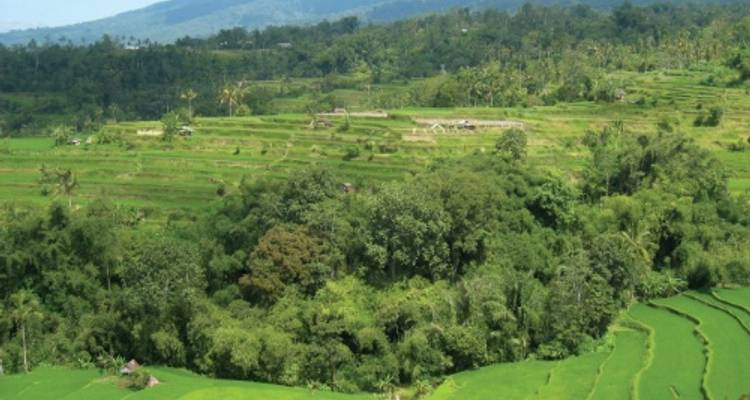 Bali Cycle Adventure - World Expeditions