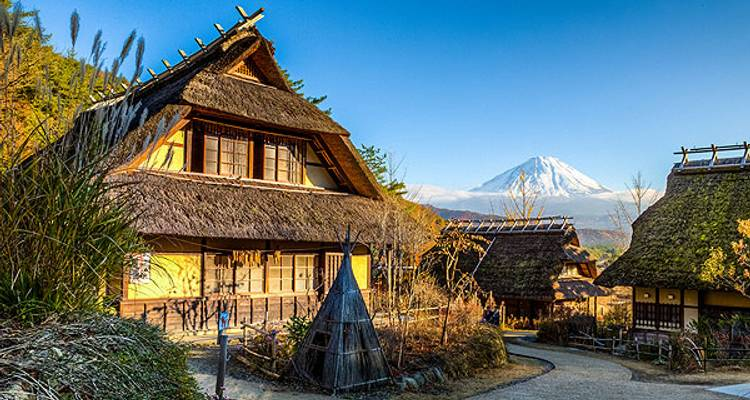 Japan Kanto - 5 days - Super Value Tours