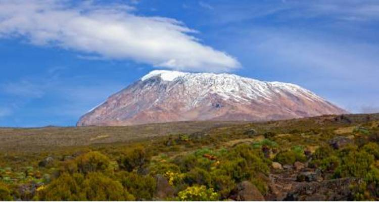 Mt Kilimanjaro Hiking Tours