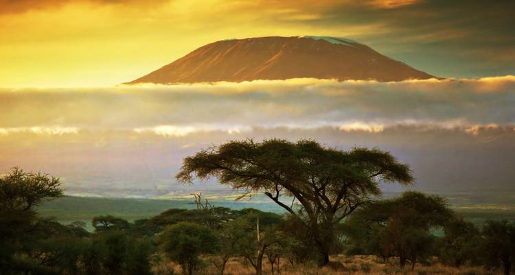 Mt Kilimanjaro Climb - 8 days - On The Go Tours