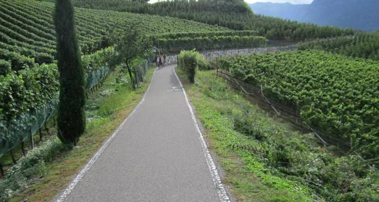 Italy - Dolomites to Lake Garda 6 Nights Cycling - Pure Adventures