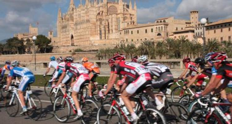 Spain - Mallorca Road Bike 6-night cycling - Pure Adventures