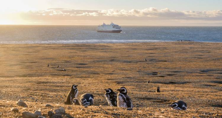 Darwin's Route from Ushuaia (8 Nights) - Australis