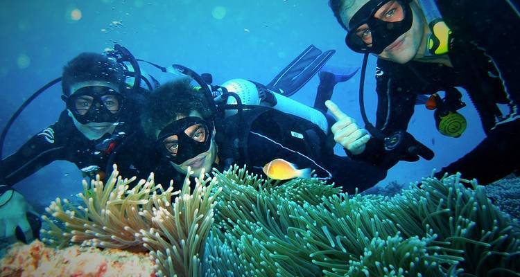 Eye On The Reef - Marine Conservation Program on the Great Barrier Reef - No Limit Adventures
