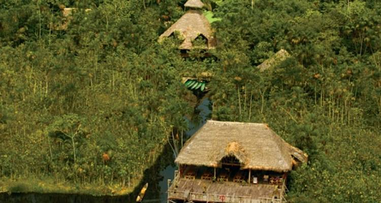 Amazon Wilderness Experience - Independent (5 days Sacha Lodge) - Peregrine Adventures