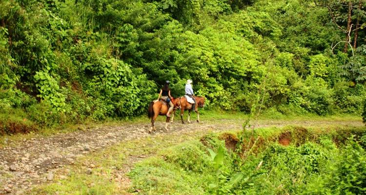 Costa Rica Flexipass 7 with 1 free activity - Bamba Experience