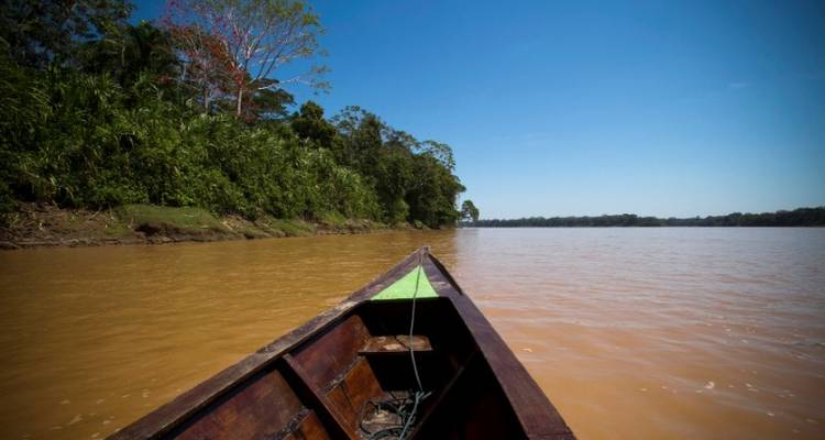 Puerto Maldonado Amazon Eco-Lodge (from Puerto Maldonado) (5 days) - Bamba Experience