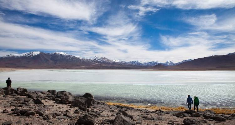 Salt Flats to Buenos Aires Ways (from La Paz) - Bamba Experience
