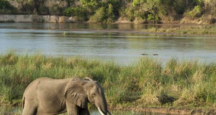 Day Trip - Lake Manyara National Park - Sed Adventures Tours and Safaris