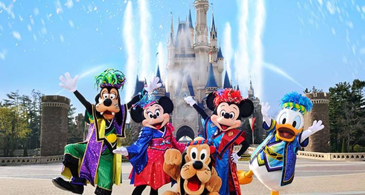 Disneyland Tour Package