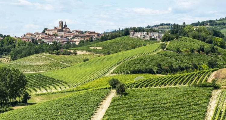 Gourmet Holiday On Piedmont Hills - Find Your Italy