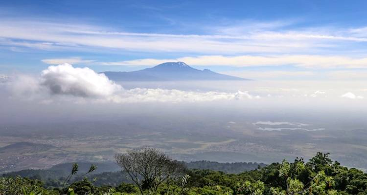 Mount Meru Trekking (including Arusha National Park) - Viva Africa Tours