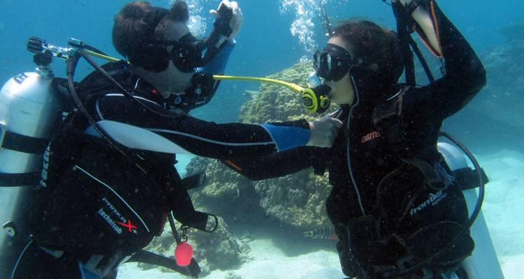PADI Open Water Course Koh Tao - Scuba Duba Dive
