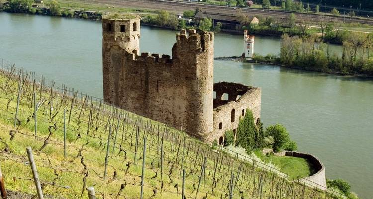 Two-River Cruise: The magic of the picturesque Moselle and the romantic Rhine Valley (port-to-port cruise) - CroisiEurope River Cruises