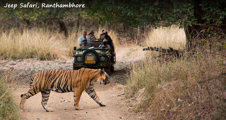 Super Saver Golden Triangle Tour with Ranthambore - GeTS Holidays