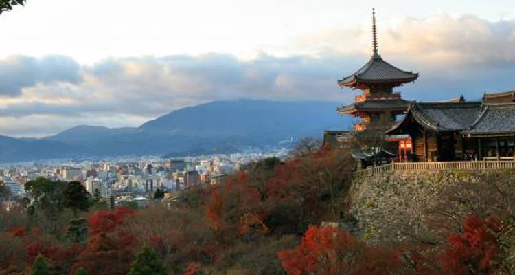 Land of the Samurai - 12 days - On The Go Tours