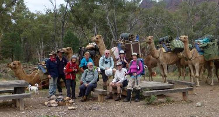 Remote Northern Flinders Camel Trek - World Expeditions
