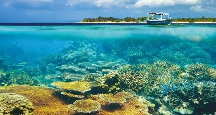 Bali Island Hopper - Topdeck