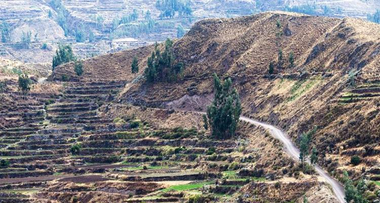 Mysteries of the Inca Empire with Arequipa & Colca Canyon - Cosmos