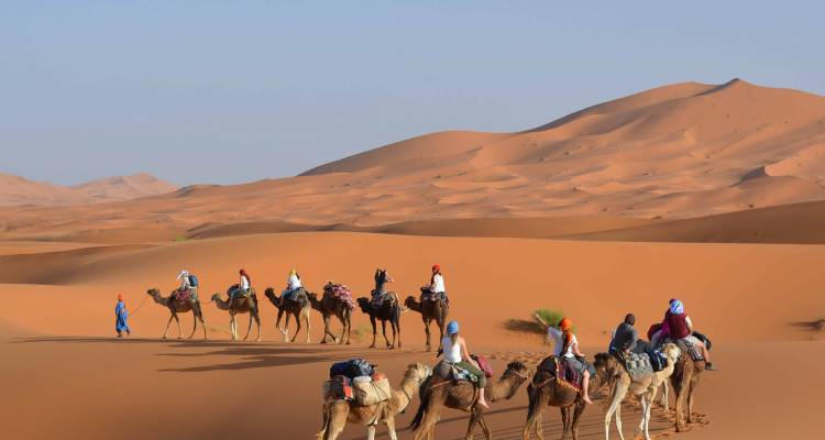 Marrakech Express - 5 Days - On The Go Tours