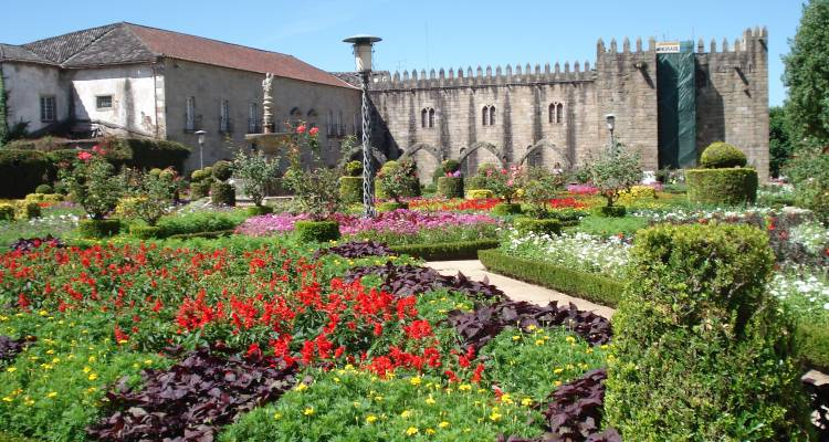 Portuguese Wine Tours - Eco Trilha