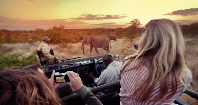 Explore Kruger National Park National Geographic Journeys - National Geographic Journeys with G Adventures
