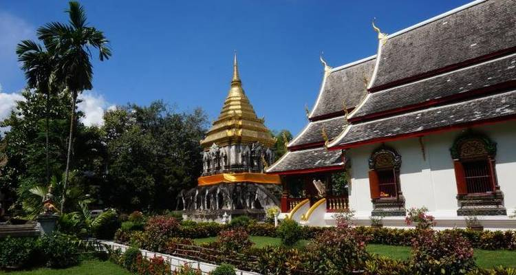 Thailand - Chiang Mai Cycling and Culture 7N Tour (from Bangkok to Chiang Mai) - Pure Adventures