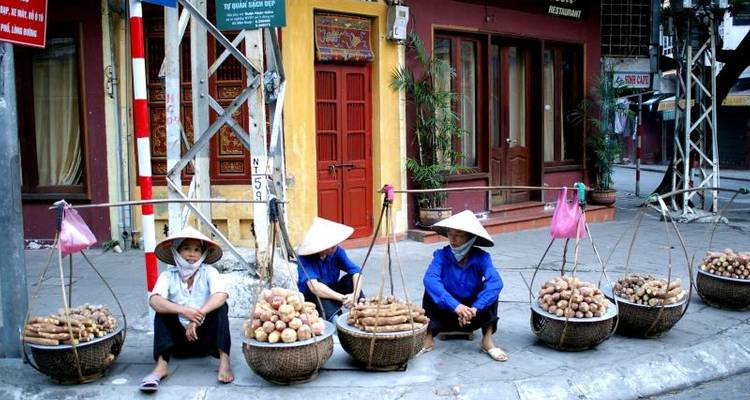 Vietnam - Central Coast Highlights Bicycle Tour (from Hanoi to Da Nang City) - Pure Adventures