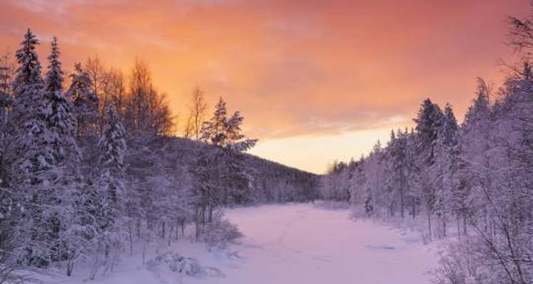 Lapland Explorer - 6 Days - On The Go Tours