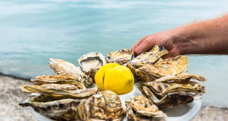 France Oysters and Wine Tour - Discovery Nomads