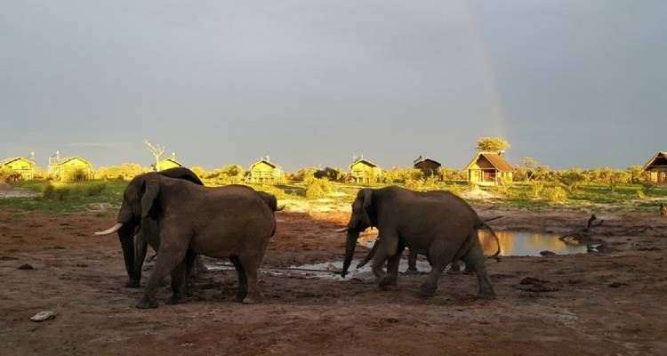 Southern African Safari Accommodated - Acacia Adventure Holidays