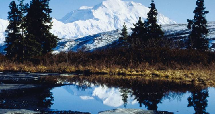 Jewels of Alaska - Insight Vacations