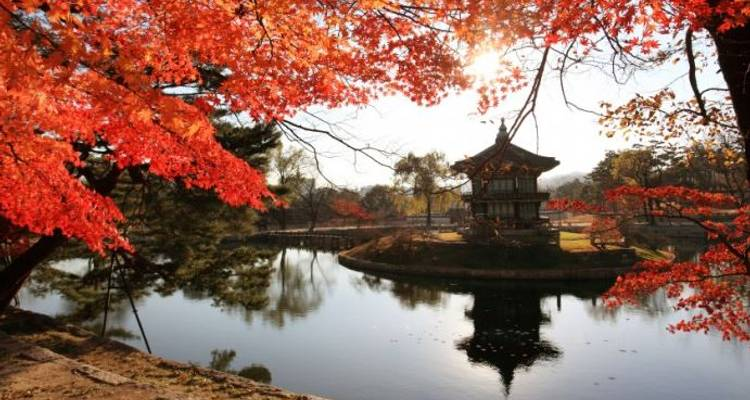 Captivating China with Seoul - Monograms