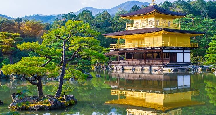 Highlights of Japan Tour 7 Days - Japan Deluxe Tours