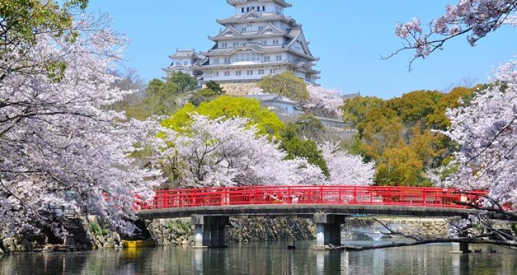 Japan Cherry Blossom Tour with Hiroshima - Beautiful Japan - Japan Deluxe Tours