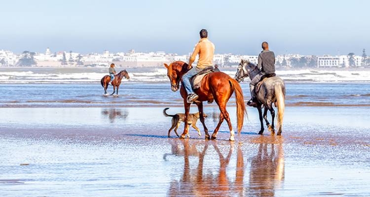 Morocco: Hike, Bike & Horse Ride - Intrepid Travel