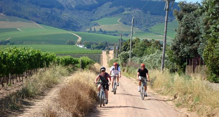 South Africa: Hike & Bike - Intrepid Travel