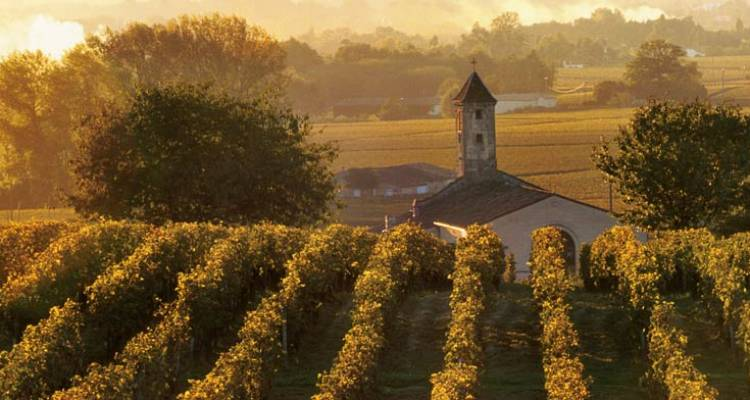 Bordeaux, Vineyards & Châteaux (Bordeaux to Bordeaux, 2018) - Uniworld Boutique River Cruise Collection